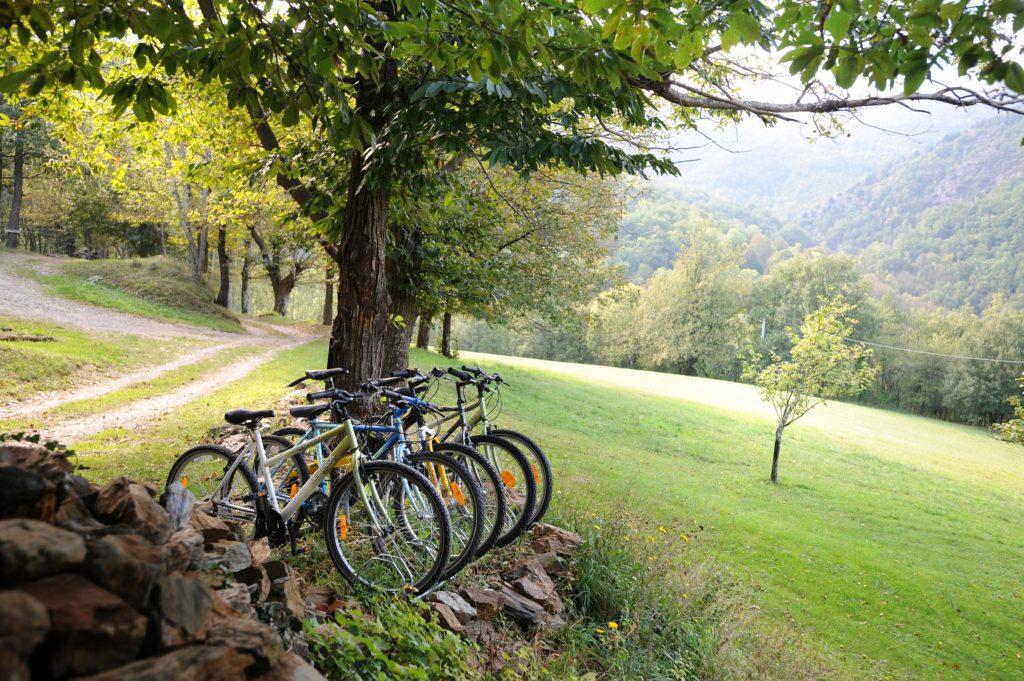 Faire du Vélo au vieux Mas