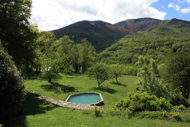 La piscine du vieux Mas